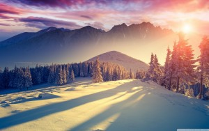 sunset_winter_shadows-wallpaper-1440x900